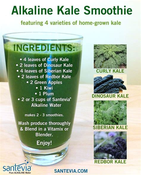 Alkaline Detox Juice Recipe by 1000 Images About Alkaline Water On Alkaline