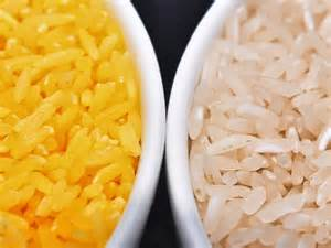 the pros and cons of genetically modified rice