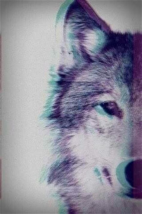 wallpaper iphone 5 wolf wolf iphone wallpaper phone background iphone wallpapers