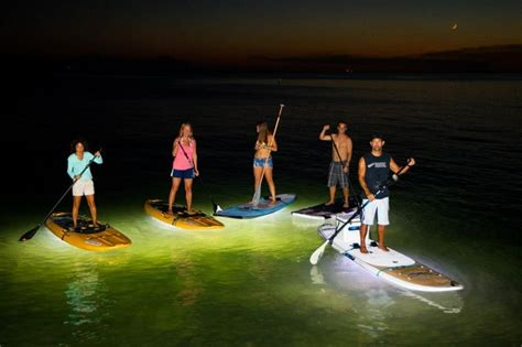 ops paddle board lights 1000 images about nocqua adventure gear on
