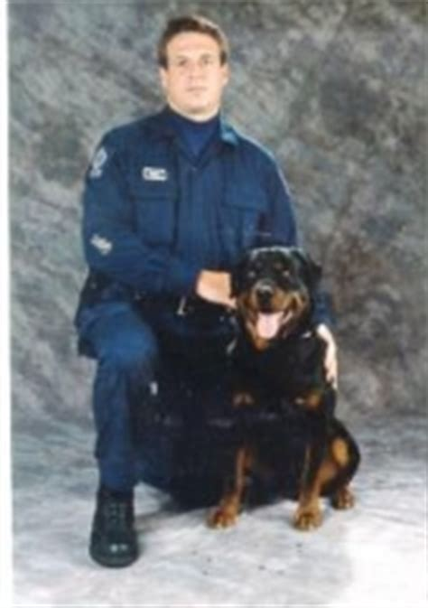 rottweiler rescue edmonton psd ceasar 2003 honorary inductee rottweiler club of canadarottweiler club of canada