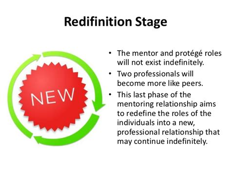 which stage of mentoring is most comfortable for the novice developing mentoring program