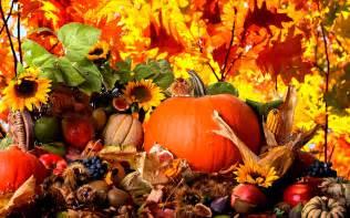 fall leaves pumpkins wallpaper
