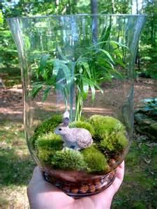 Vase Terrarium Hydroculture Terrarium Hurricane Vase Rabbit Palm Moss