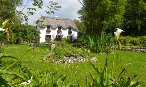 cottage in irlanda lissyclearig thatched cottage b b kenmare co kerry