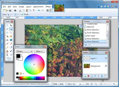 paint software paint net software driverlayer search engine