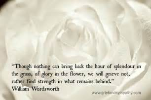 comfort for grieving splendor in the grass poem wordsworth grief quotes for