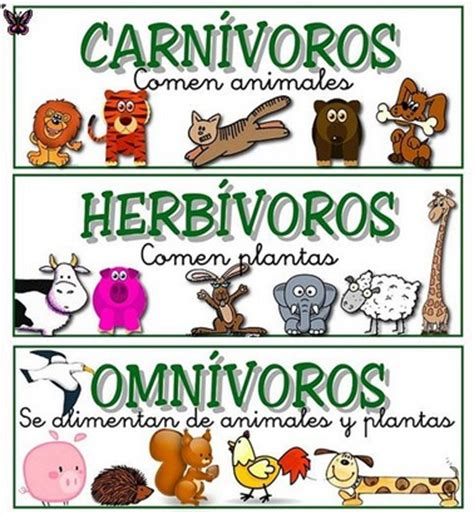 imagenes animales herbivoros carnivoros y omnivoros ciencias naturales grado segundo animales carnivoros