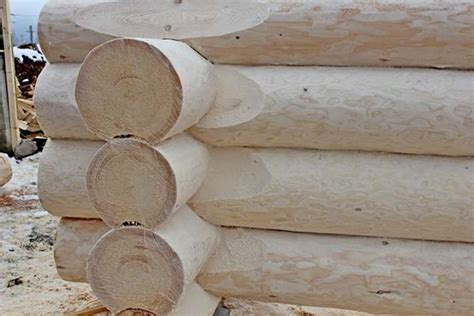 in tronchi di legno prezzi di tronchi con struttura di legno