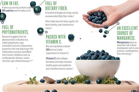 Powder Premium Blueberry Bubuk Drink Blueberry Premium 1 Kg 2 new arrival best quality food grade juice pasty blueberry
