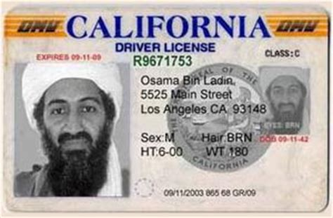 Drivers License Number Lookup Ca Dmv Drivers License Number Lookup