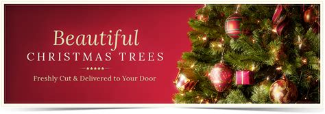christmas tree перевод