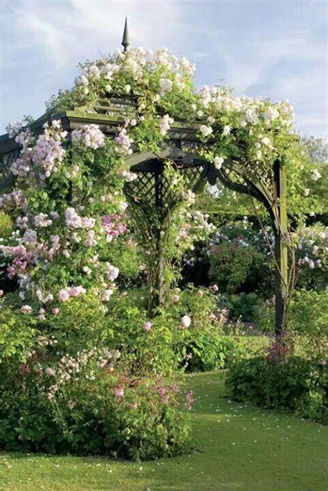 climbing roses  gazebo garden arbor garden garden gazebo