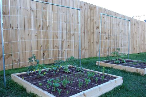 building trellises building your trellises my raised bed vegetable garden