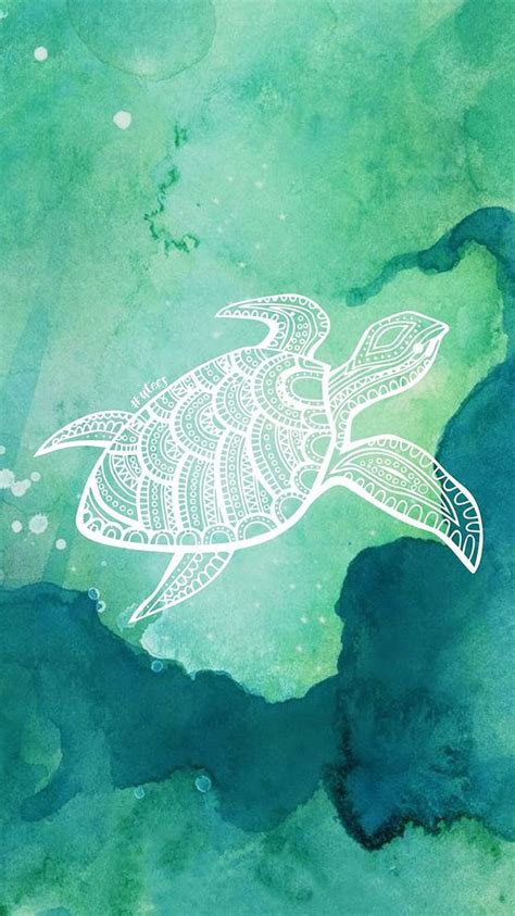 turtle love wallpaper background    university tees