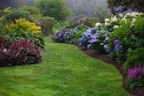 Hydrangea Garden by Top Best Camden Maine Waterfront Inn With Acres Of