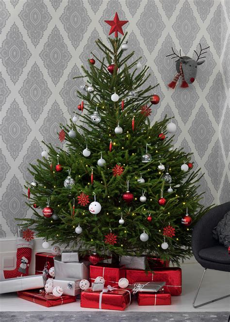 real christmas trees how to buy decorate and care for