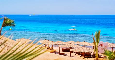 best resort in sharm el sheikh hotels in sharm el sheikh special offers sincern