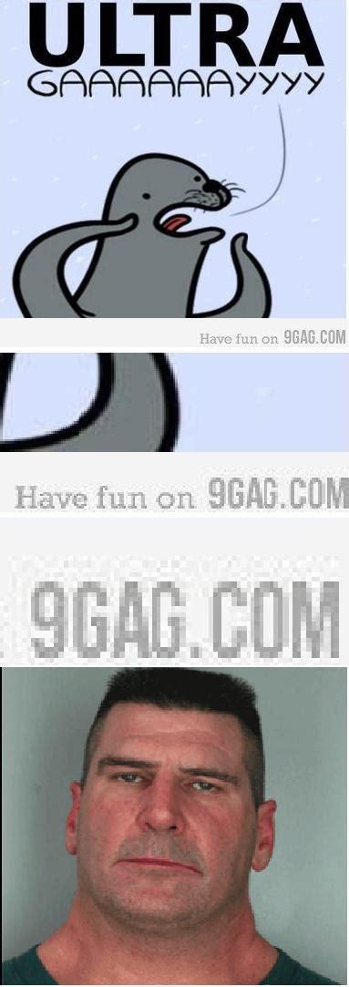Homophobic Meme - homophobic seal know your meme
