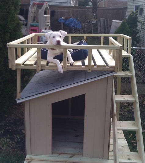 home depot dog houses dog house with roof top deck the home depot community