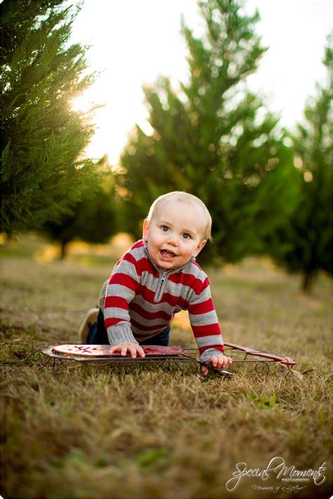 collections of arkansas christmas tree farms easy diy