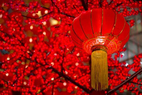 new year in china where to celebrate new year in