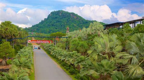 nong nooch tropical botanical garden nong nooch tropical botanical garden pattaya expedia sg