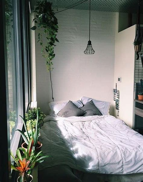 bedroom plants moroccan design plants and bedrooms on pinterest