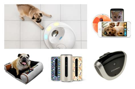 15 best gadget gifts for geeky pets