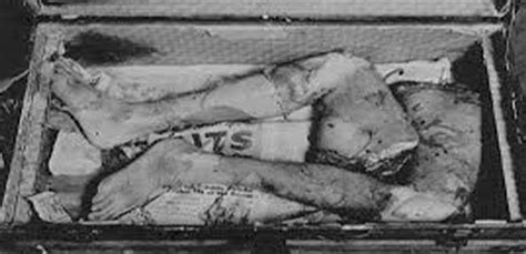 ed gein house edward theodore gein guts and gore