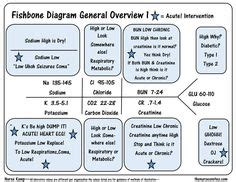 7 9 panel creatinine fishbone diagram for lab values nursing