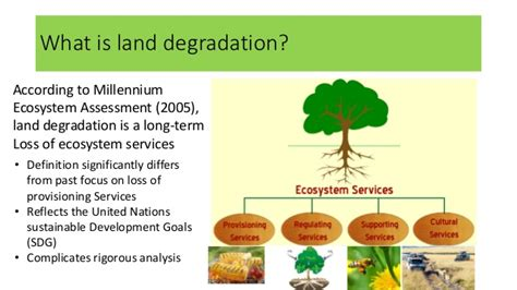 Landscape Degradation Definition The Cost Of And Of Inaction Against Land Degradation