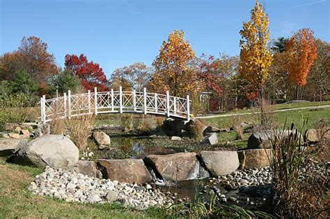 Sayen Gardens Hamilton Nj by Sayen Gardens In Autumn