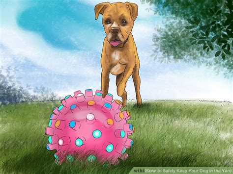 how to keep dog in yard how to safely keep your dog in the yard 12 steps with pictures