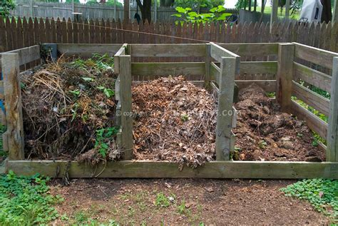 backyard composting bin three stage compost bin in backyard plant flower stock