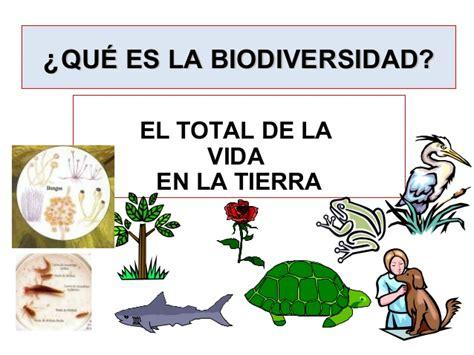 la diversidad de la biodiversidad 1