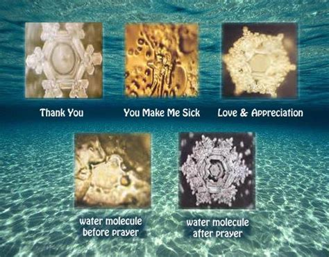 Pdf Messages Water Masaru Emoto by Dr Masaru Emoto Rip Quot Human Consciousness Has An