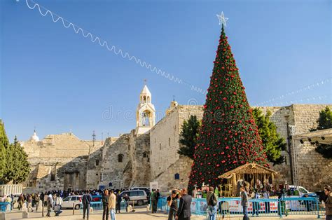 christmas tree near nativity church bethlehem editorial
