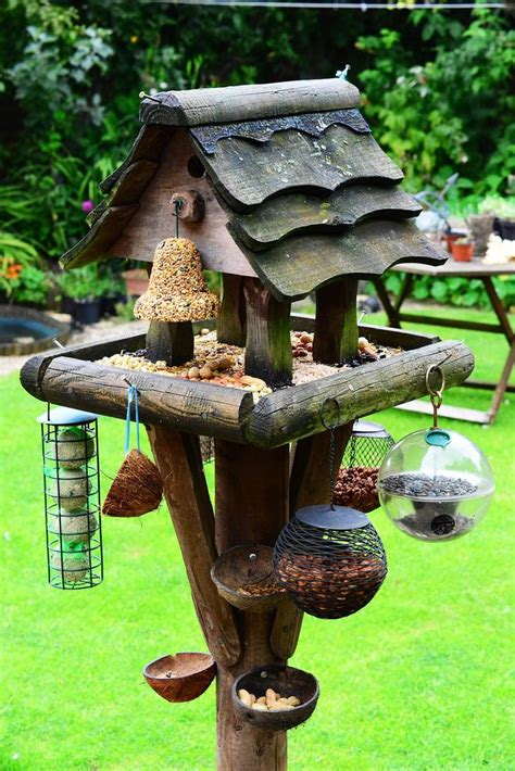 bird stations feeders bird cages