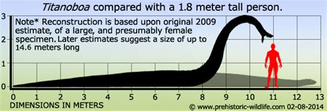45 Feet To Meters by Titanoboa