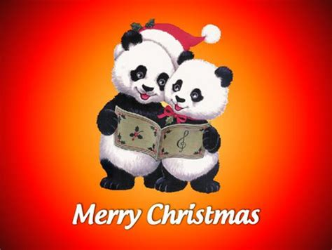 Cute Christmas Panda Bear | christmas panda bears collages abstract background