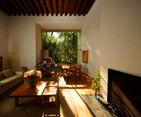Living Room Plants Ideas