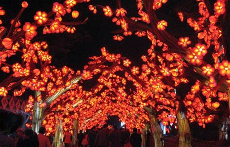 Botanical Garden Lantern Festival Lanterns Return To The Missouri Botanical Garden Next May With Quot Magic Reimagined Quot St