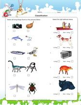 Living And Nonliving Things Worksheets Pdf by 2nd Grade Science Worksheets For Practice Pdf