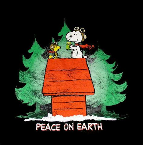 christmas snoopy images  pinterest christmas snoopy christmas time  merry