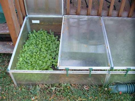 Cold Frame Gardening by Building And Using Cold Frames In The Backyard Garden