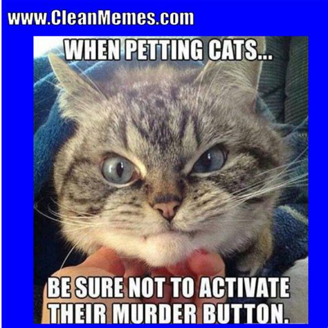 Cat Memes 2018 - clean memes the best the most online clean memes and images no smut no cussing no perversion