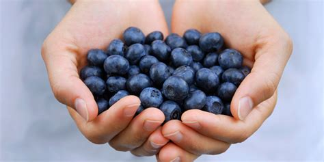 7 Foods To Make You Smarter by 7 Foods That Make You Smarter The Beachbody