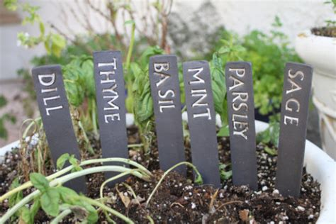 herb garden markers a giveaway the honeycomb home herb garden markers a giveaway the honeycomb home