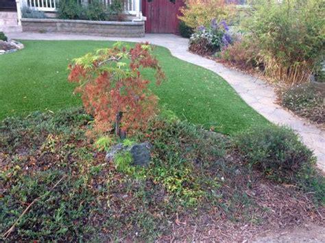 artificial grass installation oak ridge florida backyard